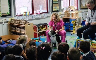 Local school visit to talk about Homelessness and dogs